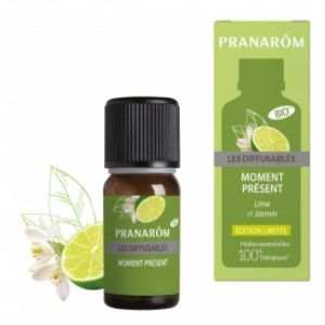 Les Diffusables Moment Present Melange Diff. 10ml
